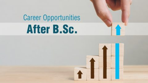Career Opportunities After B Sc